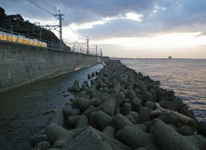 20121113shioya_east_shore2
