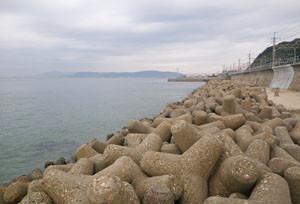 20131029suma_west_shore